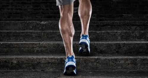 calf-raises-runners